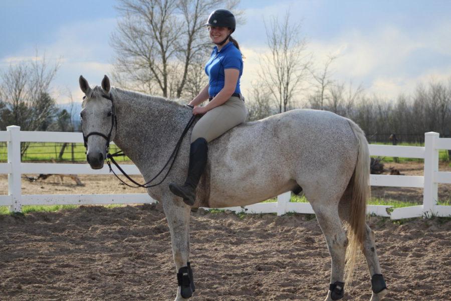 A horseback rider's view