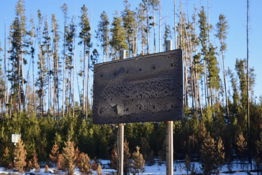 Beyond Recognition: a road sign just within Rocky Mountain National Park near Grand Lake stands burned only a few yards from where the fire was stopped by firefighters. The Grand Lake entrances to Rocky Mountain National Park were closed, as well as Kawuneeche Visitor Center. A smaller park road remained open with access to employee residences (which had mostly been saved from the fire), a singed picnic ground along the Green Mountain Trail, which was virtually gone, and some residences just outside the park. The fire burned both sides of this smaller road. The sign stands on the edge of a wetland that was also completely destroyed. (Green Mountain Trail, near Trail Ridge Road)
